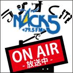ワークランド ネットショップ ラジオCM 『 Nack5』で放送中!